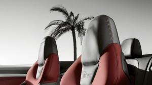 Gamme S5 Cabriolet : photo 10