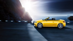 Gamme TTS Roadster : photo 2